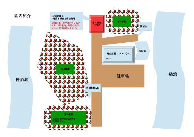 椿園案内図